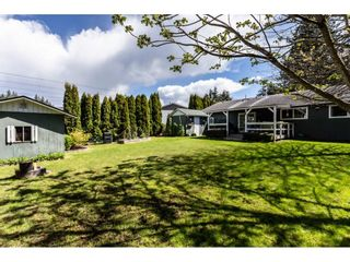 Photo 19: 4480 203 Street in Langley: Langley City House for sale : MLS®# R2384555
