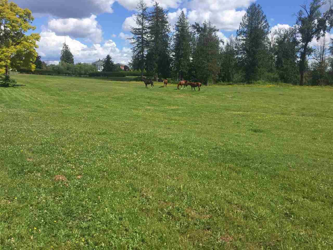 Main Photo: 558 248 Street in Langley: Otter District Agri-Business for sale : MLS®# C8034821