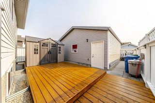 Photo 35: 152 Martinvalley Crescent NE in Calgary: Martindale Detached for sale : MLS®# A1145930