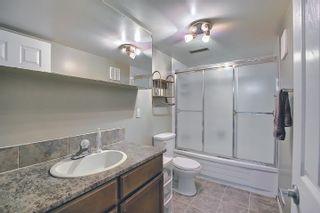 Photo 43: 9832 187 Street in Edmonton: Zone 20 House for sale : MLS®# E4253744