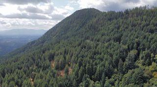 Photo 14: 8150 Hidden Hills Rd in : Du West Duncan Unimproved Land for sale (Duncan)  : MLS®# 887503