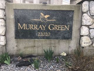 """Photo 1: 230 22020 49 Avenue in Langley: Murrayville Condo for sale in """"Murrays Green"""" : MLS®# R2552445"""