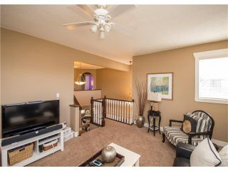Photo 22: 34 CHAPALA Court SE in Calgary: Chaparral House for sale : MLS®# C4108128