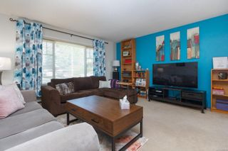 Photo 4: 151 Obed Ave in : SW Gorge Half Duplex for sale (Saanich West)  : MLS®# 857575