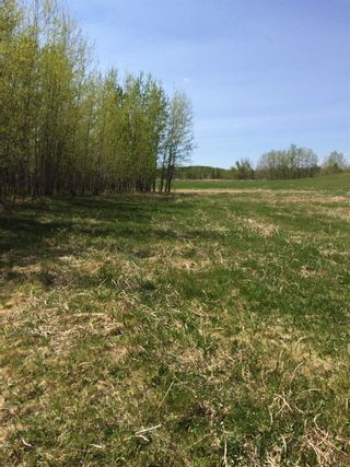 Photo 4: Twp 510 RR 33: Rural Leduc County Rural Land/Vacant Lot for sale : MLS®# E4239253