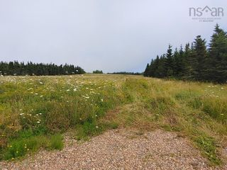 Photo 5: Lot Nollett Beckwith Road in Ogilvie: 404-Kings County Vacant Land for sale (Annapolis Valley)  : MLS®# 202120227