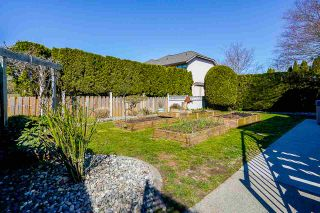 Photo 32: 9147 207 Street in Langley: Walnut Grove House for sale : MLS®# R2565776