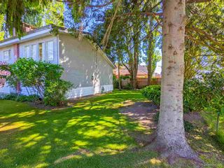 Photo 10: 3820 EARLMOND Avenue in Richmond: Seafair House for sale : MLS®# R2582825