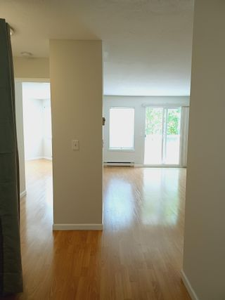 """Photo 7: 307 450 BROMLEY Street in Coquitlam: Coquitlam East Condo for sale in """"BROMLEY MANOR"""" : MLS®# R2612328"""