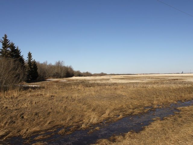 Main Photo: RGE RD 175 TWP RD 500: Rural Beaver County Rural Land/Vacant Lot for sale : MLS®# E4233179