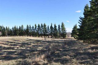 Photo 15: 10 57126 Range Road 12: Rural Barrhead County Rural Land/Vacant Lot for sale : MLS®# E4241768