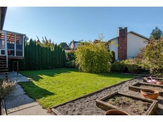 Photo 20: 3547 HORN Street in Abbotsford: Central Abbotsford House for sale : MLS®# R2317721