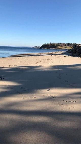 Photo 12: 20 Lake View Drive in Chance Harbour: 108-Rural Pictou County Residential for sale (Northern Region)  : MLS®# 202102676