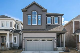Photo 40: 151 Windford Rise SW: Airdrie Detached for sale : MLS®# A1096782