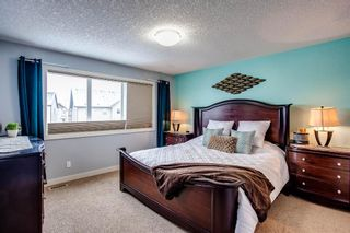 Photo 17: 691 COPPERPOND Circle SE in Calgary: Copperfield Detached for sale : MLS®# A1063241