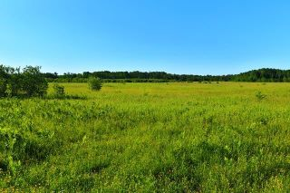 Photo 1: 0 10N Road in Sprague: Vacant Land for sale : MLS®# 202112232