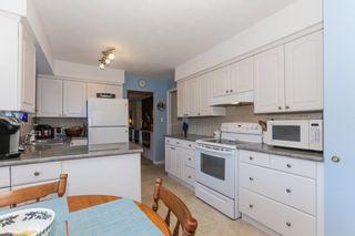 Photo 7: 4942 6 Avenue in Delta: Pebble Hill House for sale (Tsawwassen)  : MLS®# R2421712