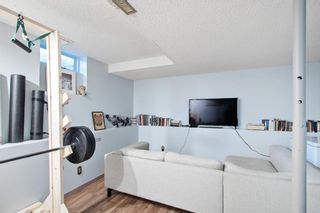 Photo 15: 3809 1 Street SW in Calgary: Parkhill Detached for sale : MLS®# A1061250