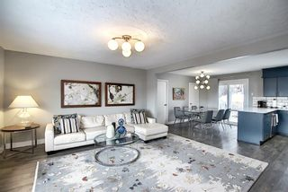 Photo 7: 836 Bridge Crescent NE in Calgary: Bridgeland/Riverside Detached for sale : MLS®# A1084169