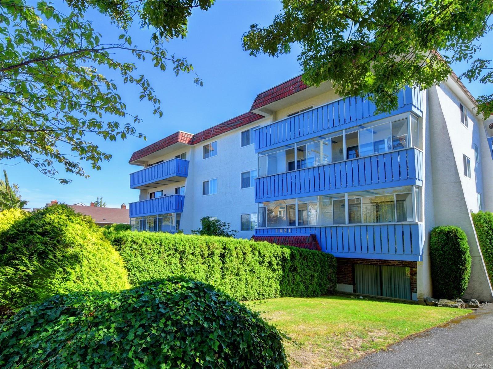 Main Photo: 303 1021 Collinson St in : Vi Fairfield West Condo for sale (Victoria)  : MLS®# 853542