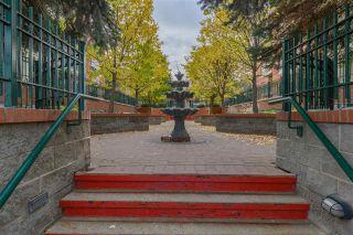 Photo 5: 103 37 SIR WINSTON CHURCHILL Avenue: St. Albert Condo for sale : MLS®# E4224552