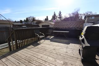 Photo 4: 4341 58 Street NE in Calgary: Temple Semi Detached for sale : MLS®# A1096497