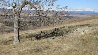 Photo 5: SW 36-20-3W5: Rural Foothills County Residential Land for sale : MLS®# A1101413