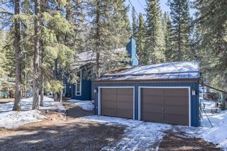 Photo 50: 35 Burntall Drive: Bragg Creek Detached for sale : MLS®# A1090777