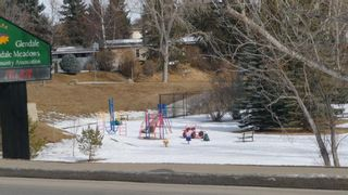 Photo 46: 2603 45 Street SW in Calgary: Glendale Detached for sale : MLS®# A1013600
