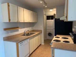 Photo 8: 211 10511 19 Avenue in Edmonton: Zone 16 Condo for sale : MLS®# E4262228