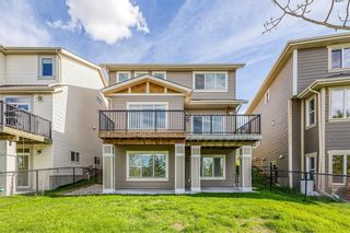 Photo 41: 212 COPPERPOND Circle SE in Calgary: Copperfield Detached for sale : MLS®# C4305503