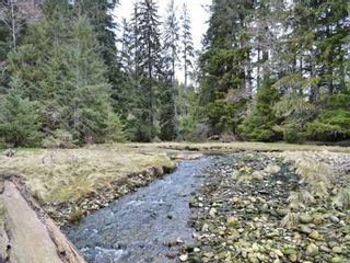 Photo 31: W1/2 SW&NW1/4 Quatsino Sound in : NI Port Hardy Land for sale (North Island)  : MLS®# 866764