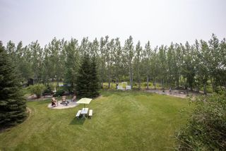 Photo 47: Private Treed Acreage in the City of Airdrie