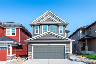 Main Photo: 343 Evanston Way NW in Calgary: Evanston Detached for sale : MLS®# A1131484