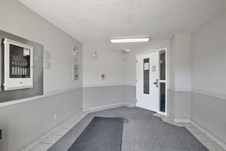 Photo 31: 205 7205 Valleyview Park SE in Calgary: Dover Apartment for sale : MLS®# A1152735