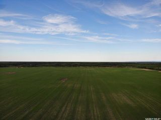 Photo 7: Melnychuk Land in Hudson Bay: Farm for sale (Hudson Bay Rm No. 394)  : MLS®# SK834016