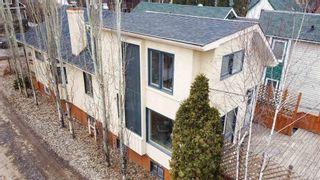 Photo 41: 10161 92 Street in Edmonton: Zone 13 House for sale : MLS®# E4262113