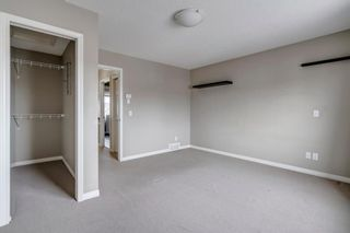 Photo 26: 1571 COPPERFIELD Boulevard SE in Calgary: Copperfield Detached for sale : MLS®# A1107569