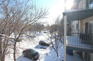 Photo 19: 314 10 Dover Point SE in Calgary: Dover Apartment for sale : MLS®# A1073058