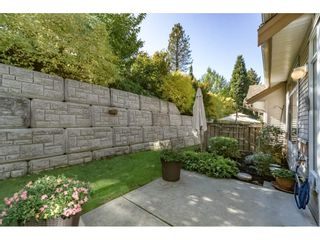 """Photo 20: 42 11860 RIVER Road in Surrey: Royal Heights Townhouse for sale in """"Cypress Ridge"""" (North Surrey)  : MLS®# R2216703"""