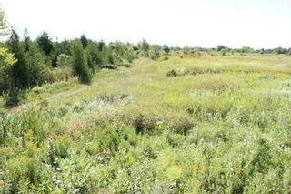 Photo 6: 172 Glenarm Road in Kawartha Lakes: Rural Carden House (Bungalow) for sale : MLS®# X3017172