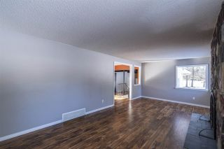 Photo 19: 205 Grandisle Point in Edmonton: Zone 57 House for sale : MLS®# E4230461