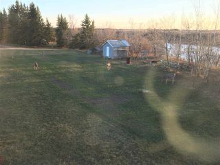 Photo 50: 48134 RGE RD 235: Rural Leduc County House for sale : MLS®# E4222972