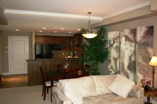 Photo 8: 119 1787 154 Street in Madison: Home for sale : MLS®# F2910534