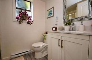 Photo 33: 3640 Blenkinsop Rd in : SE Maplewood House for sale (Saanich East)  : MLS®# 879297