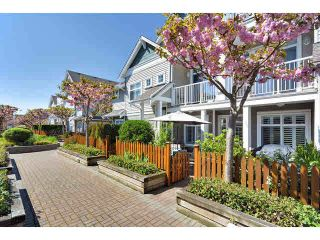 Photo 16: 29 6300 LONDON ROAD in Richmond: Steveston South Townhouse for sale : MLS®# R2374673