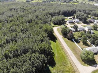 Photo 2: 50 Ave RR 281: Rural Wetaskiwin County Rural Land/Vacant Lot for sale : MLS®# E4191216