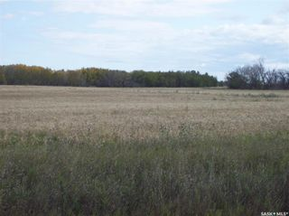 Photo 4: #1. Richardt Investment 142.57 Acres Corman Park in Corman Park: Farm for sale (Corman Park Rm No. 344)  : MLS®# SK869678