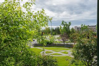 Photo 18: 221 3111 34 Avenue NW in Calgary: Varsity Apartment for sale : MLS®# A1054495