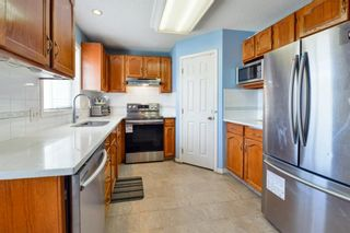 Photo 7: 10 Martha's Meadow Bay NE in Calgary: Martindale Detached for sale : MLS®# A1124430